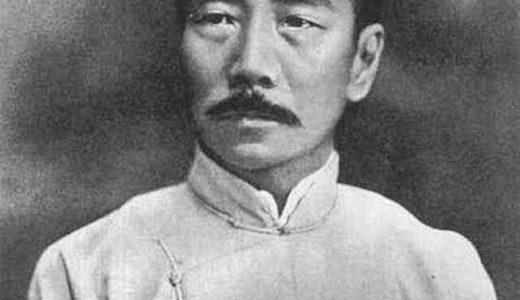 中国における新文化運動と白話化の課題について。中国の近代史における胡適、魯迅らの口語化議論を整理する。